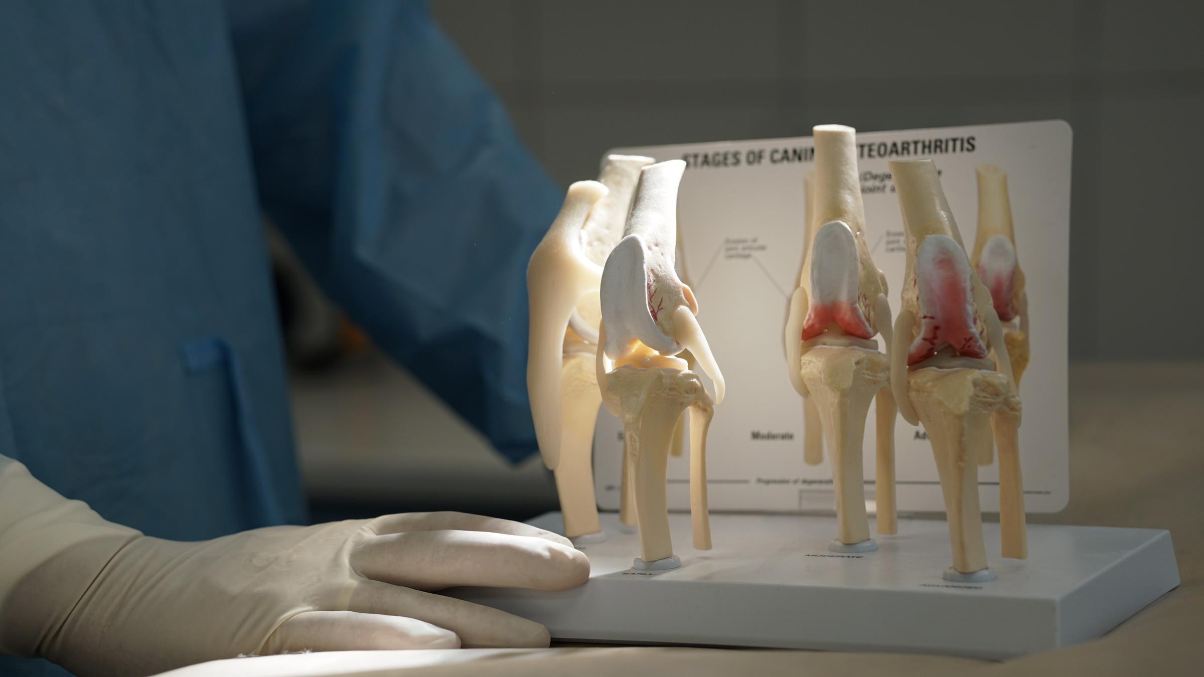 sanariu protezavimas