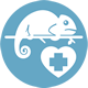 Egzotiniu-gyvunu-gydymas